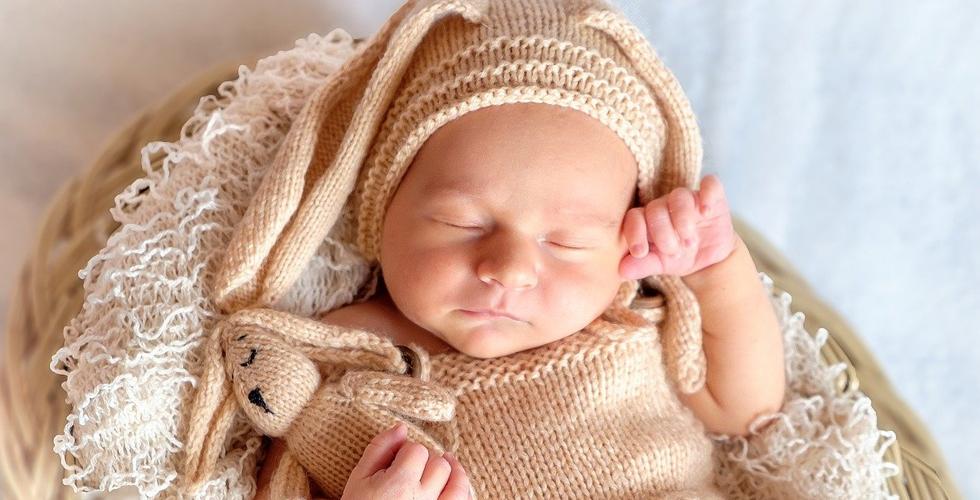 Bebek sayısında düşüş