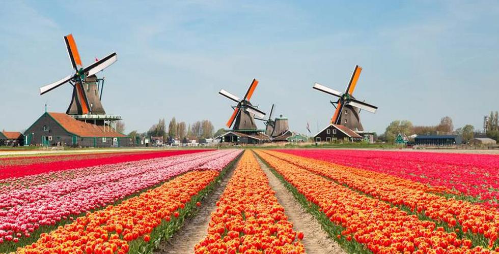 HOLLANDA'DA OTURMA İZNİ NASIL ALINIR