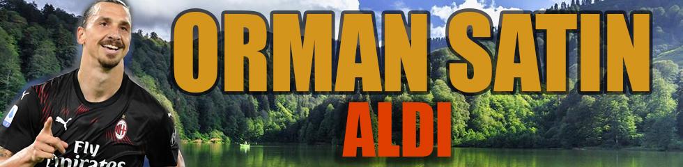 İbrahimovic 3 milyon Euro'ya orman sahibi